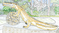 "Planned ""Gator Spirit"" statue of a gold alligator with its front paws on a ball (click for larger image in new window)"